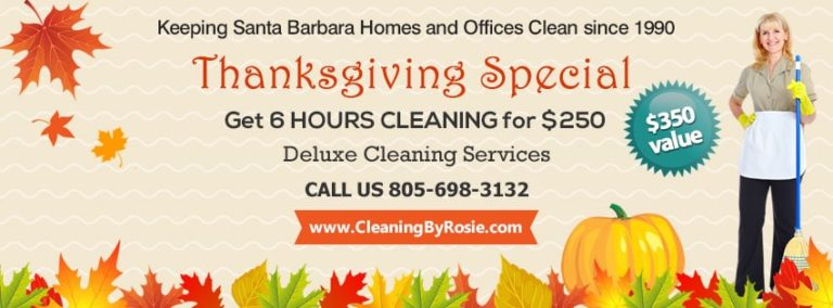 Thanksgiving House Cleaning Special ($350 value)